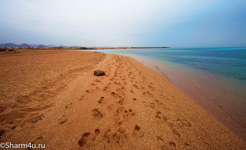 Дикий пляж в Шарм-эль-Шейхе (Монтаза) - вид в сторону отеля Sol Sharm и Cyrene