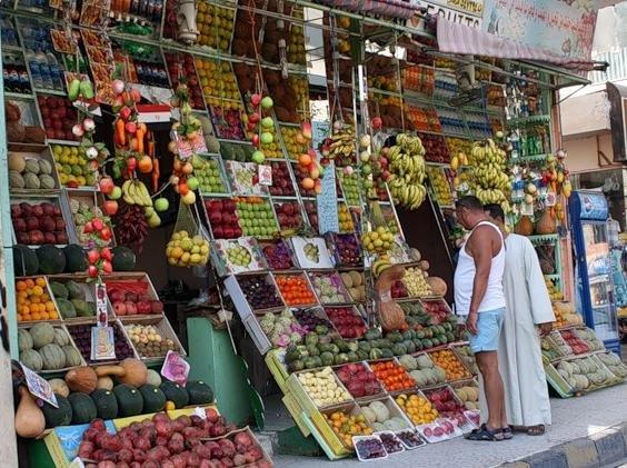 Фрукты Египта: что важно знать при покупке